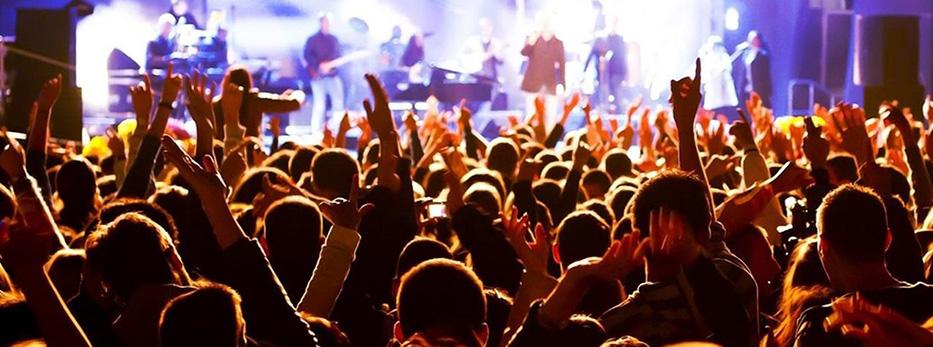 Концерты, шоу-программы, фестивали